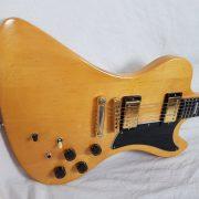 GibsonRD17