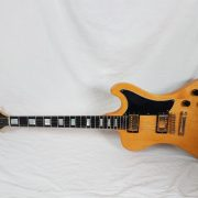 GibsonRD21